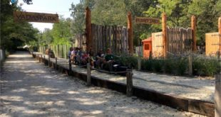 Szigethalmi vadaspark és állatsimogatóban