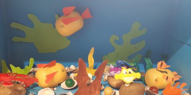 Akvárium készítése -kreatív hobby