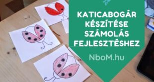 Katicabogár készítése számolás fejlesztéshez: Kreatív hobbi